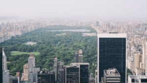 An aerial view of Central Park.