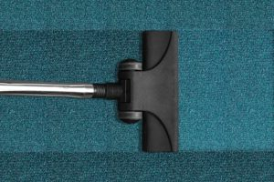 vacuum cleaner - pest-proof your NYC home