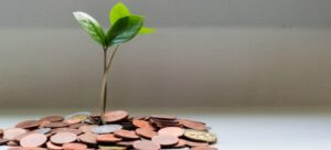 small plant sprouting from a pile of coins